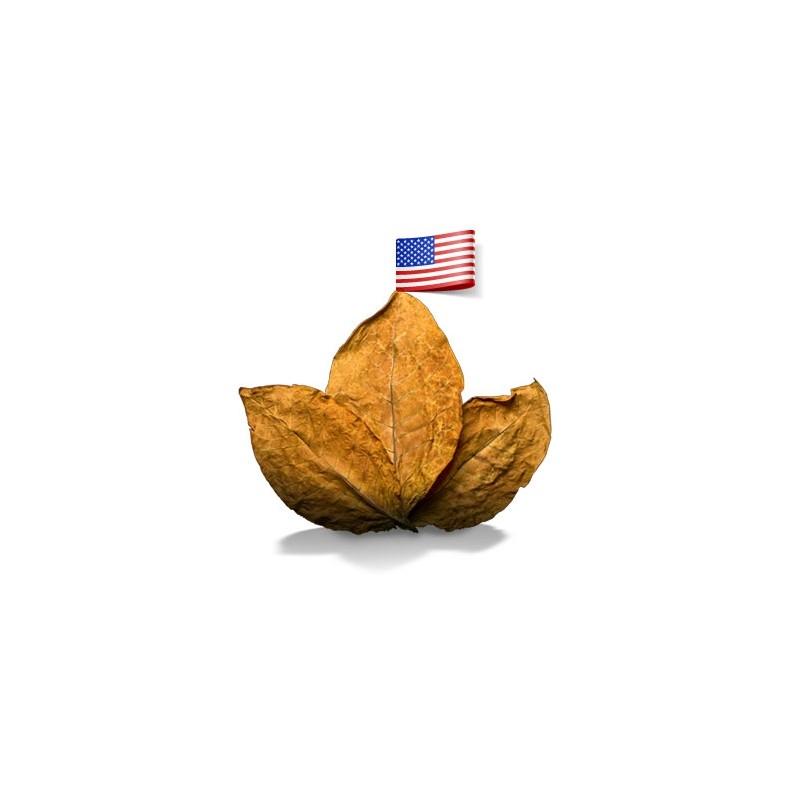 Classique Américain - EdenVape